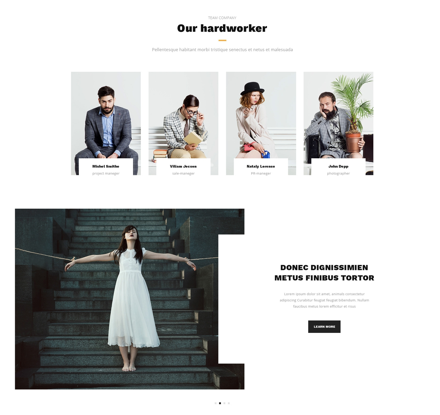 Mobile Bootstrap Business Theme
